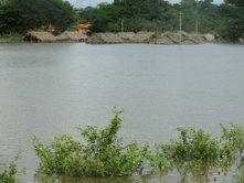 Casas praticamente cobertas pela água