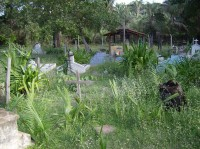 Cemitério dos Ciganinhos