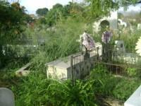 Cemitério cheio de mato